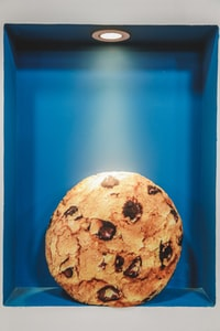 chocolate chip cookie inside lighted box