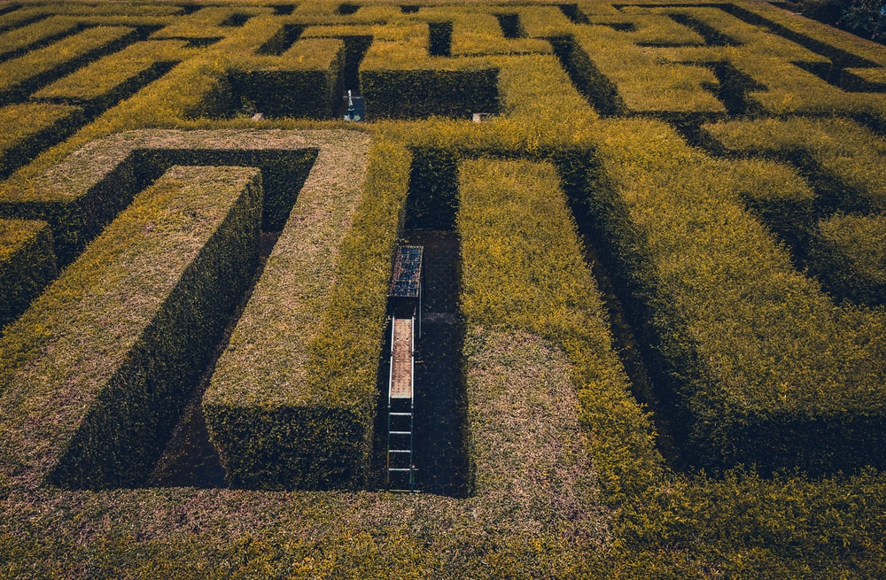 aerial photo of maze race