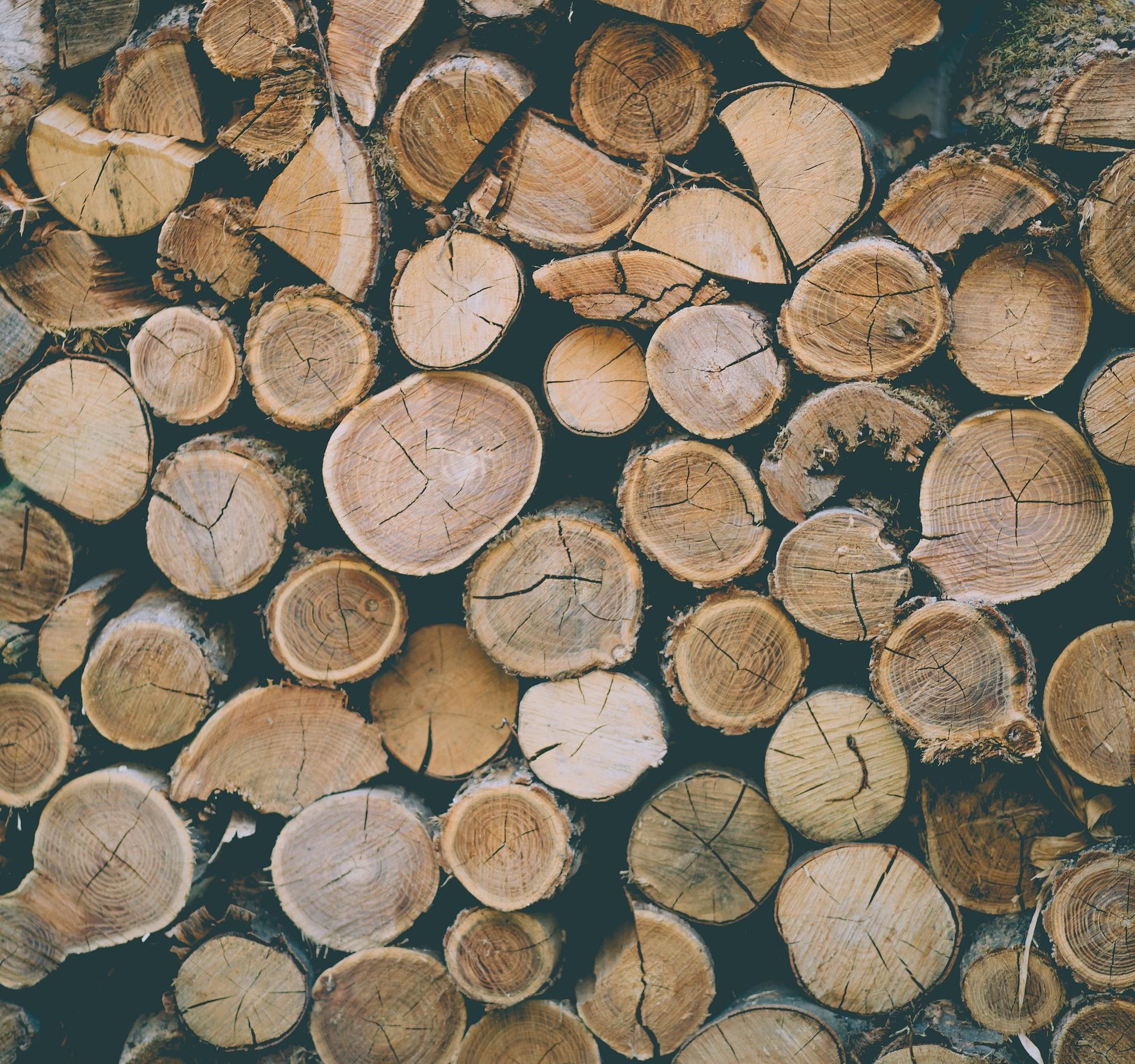 Heizwerte von Holz