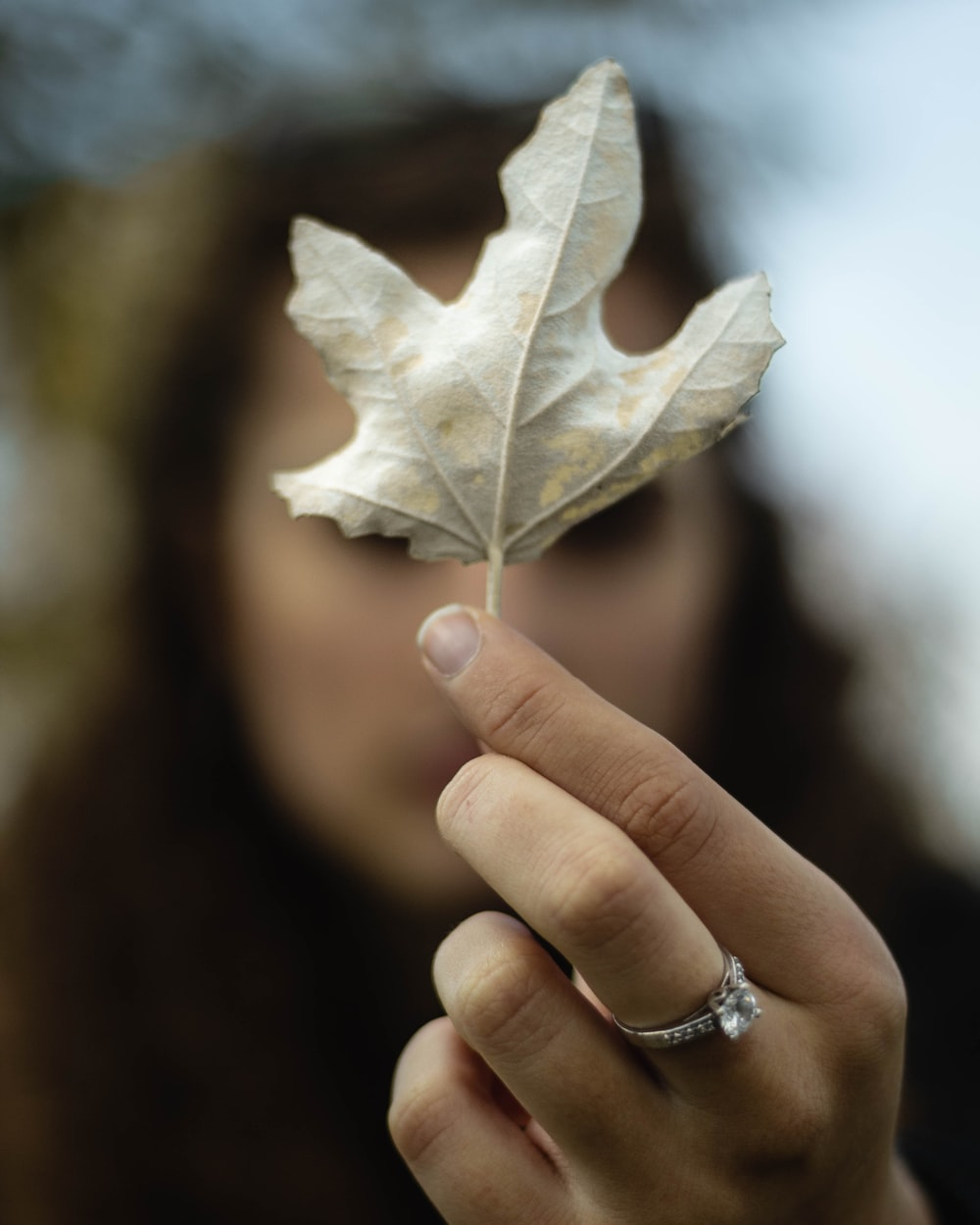 shallow focus photo of woman holding maple leaf