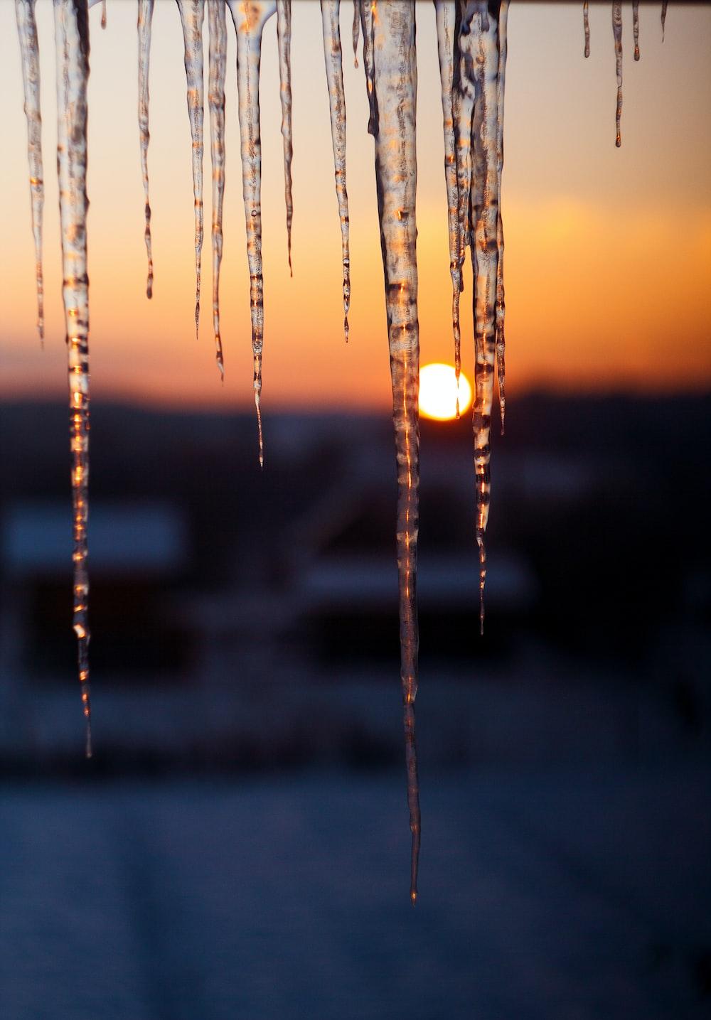 shallow focus photo of ice