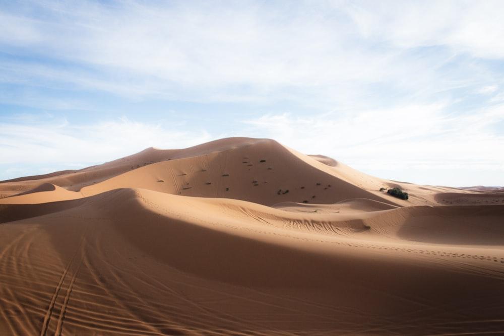 desert mound