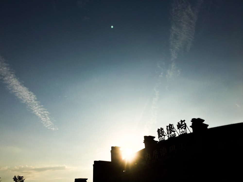 silhouette photo of building