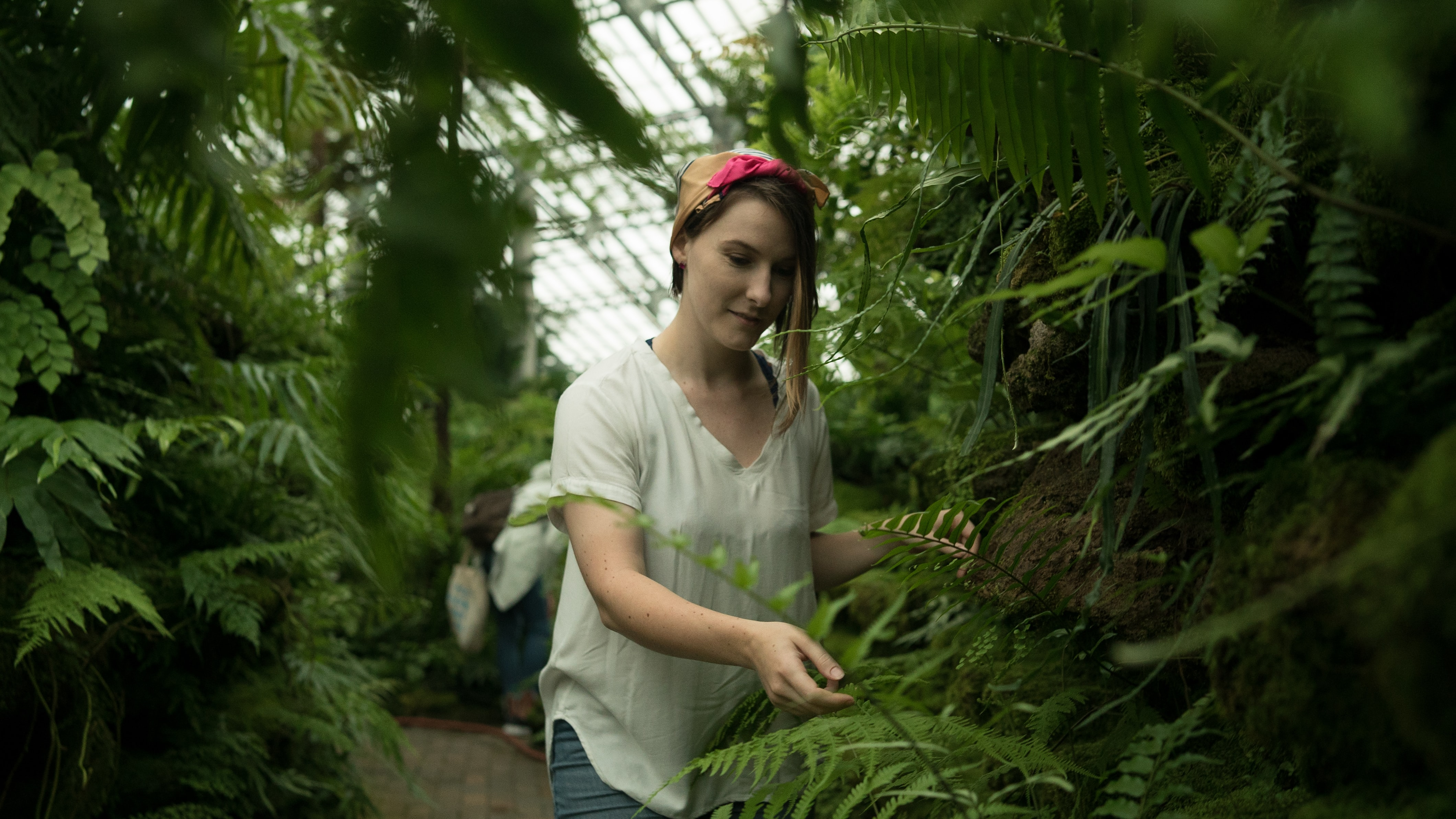 selective focus photography of woman standing beside Boston fern plant