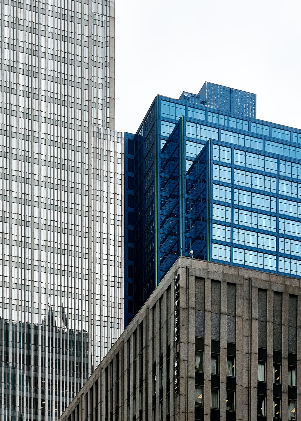 blue and gray high-rise buildings view