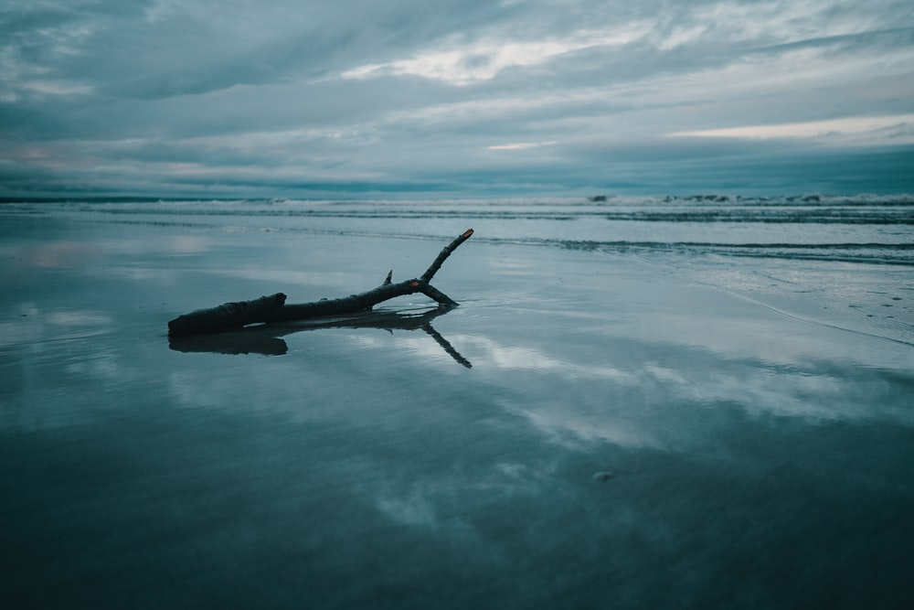 Raindrops pelt sand into a distinct t    | HD photo by