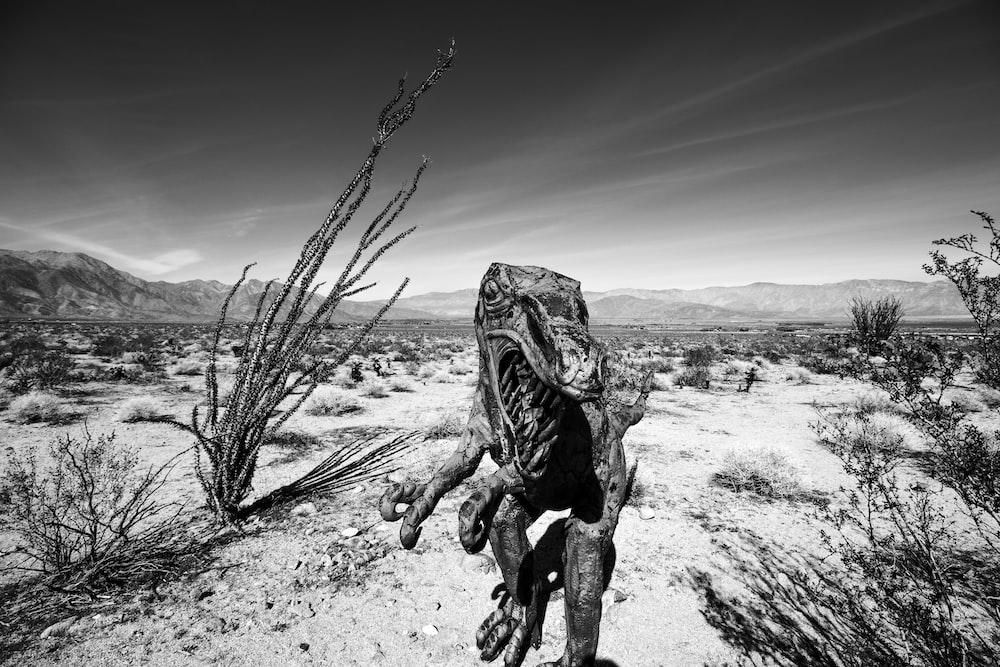 gray scale photo of creature in desert
