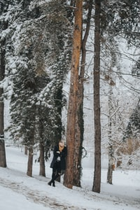 man standing beside brown snow covered trees