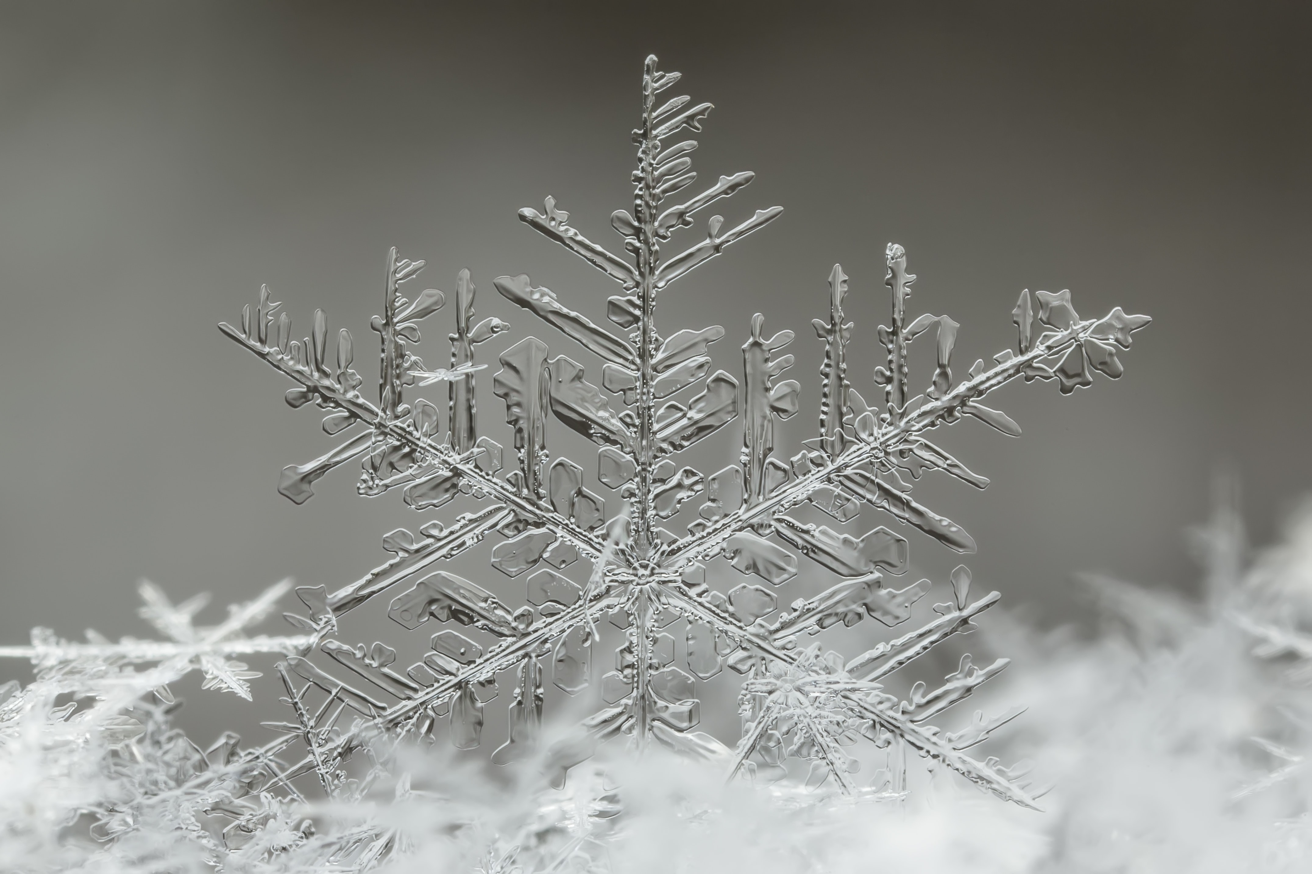 snowflakes formation