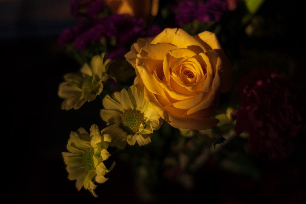 yellow rose and assorted flowers