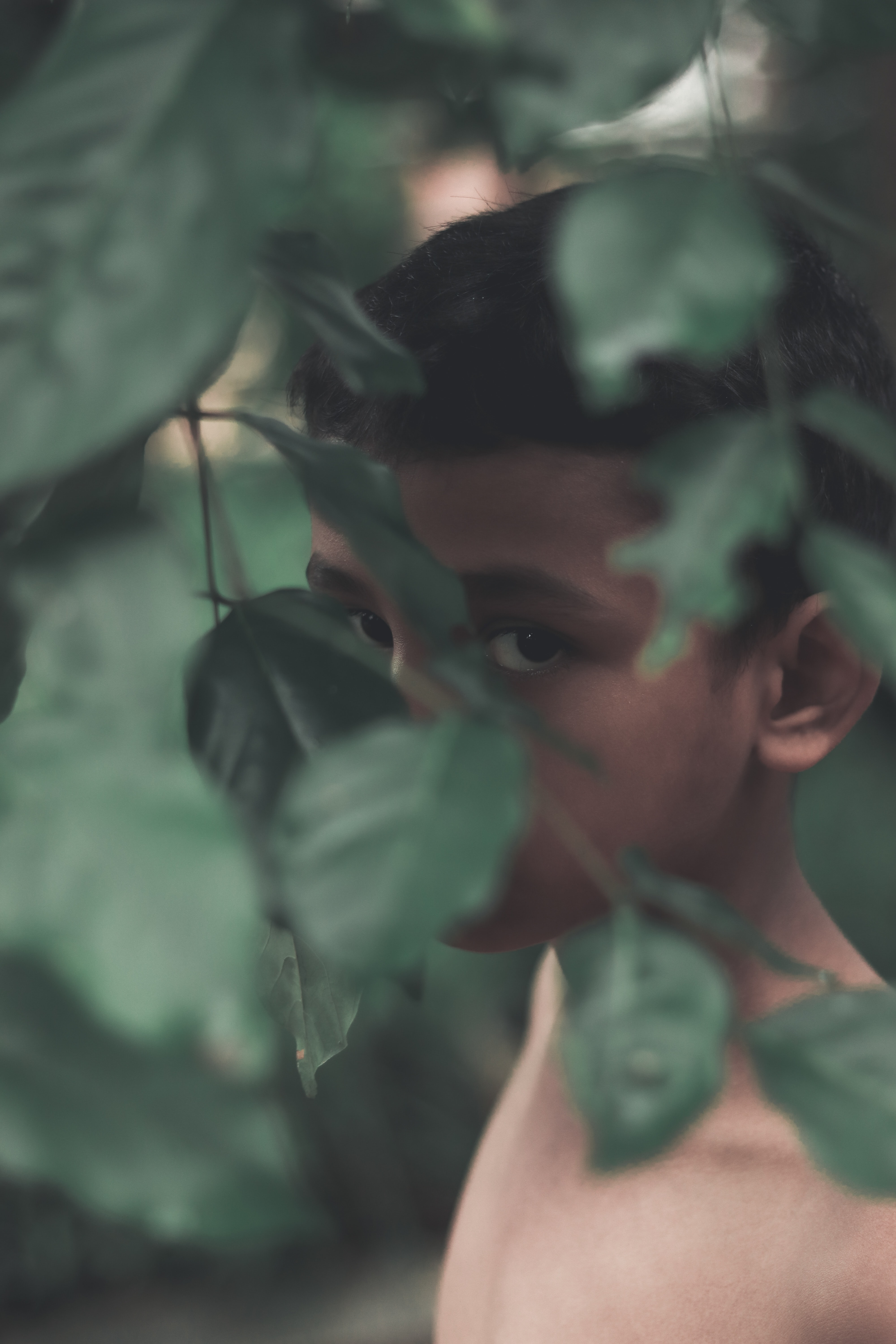topless boy behind green leafed plant during daytime