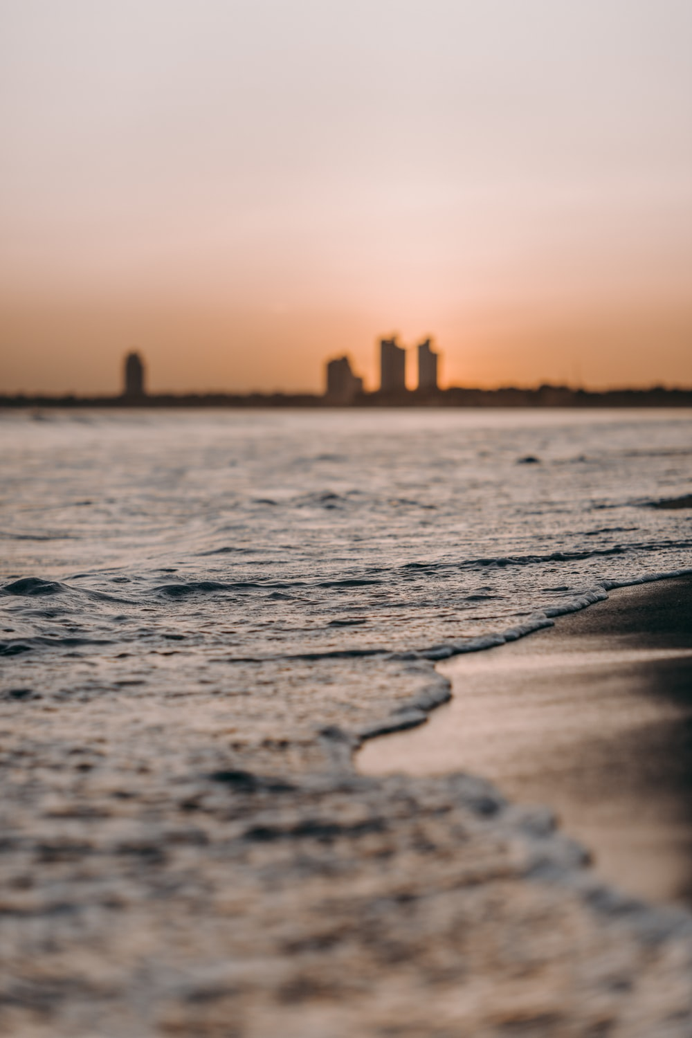 photography of shore