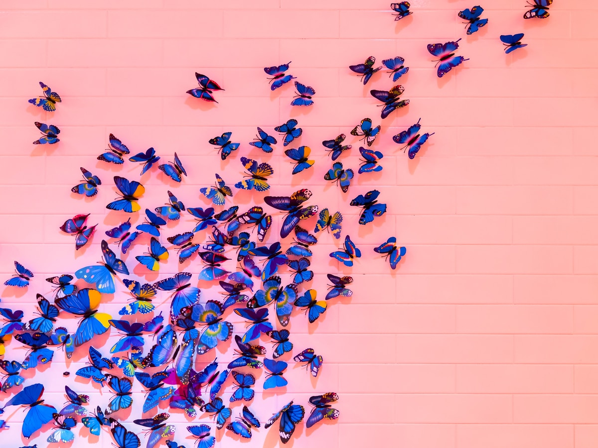 Several blue butterflies of all shapes and sizes on a peachy pink wall.  They are clustered on the left two-thirds of the wall
