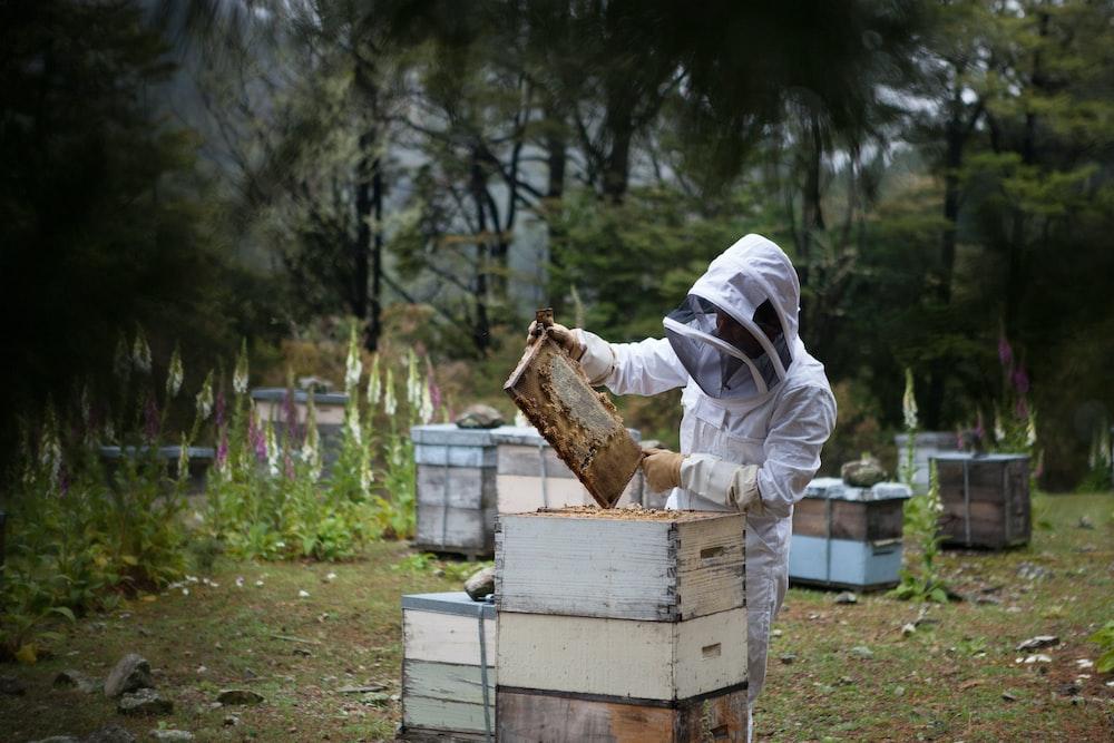 man holding honeycomb