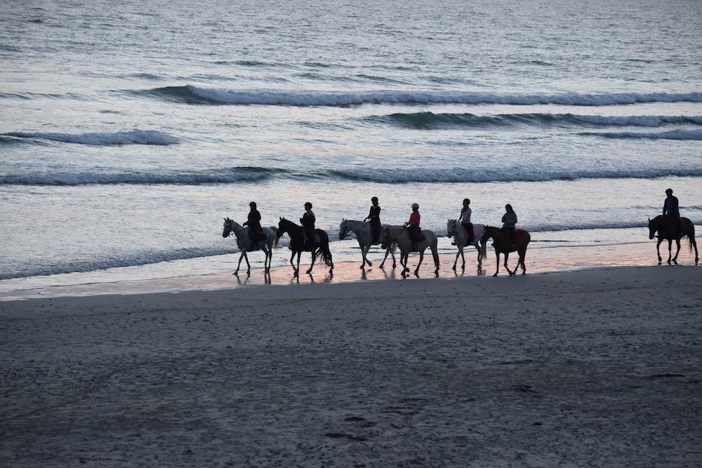 people riding horses near shore