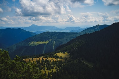 pine trees and mountains slovakia teams background
