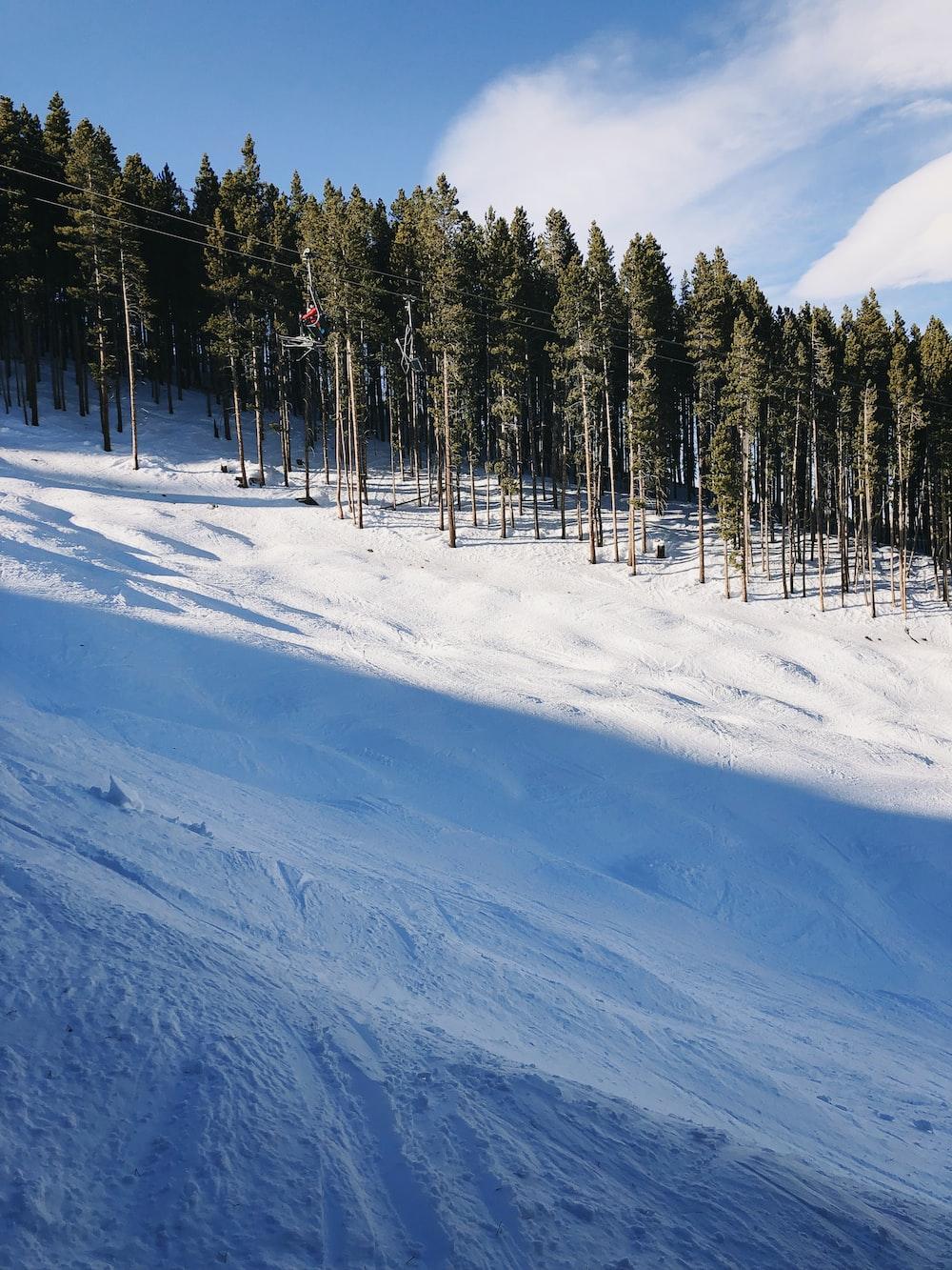 snow covered slope under blue skies