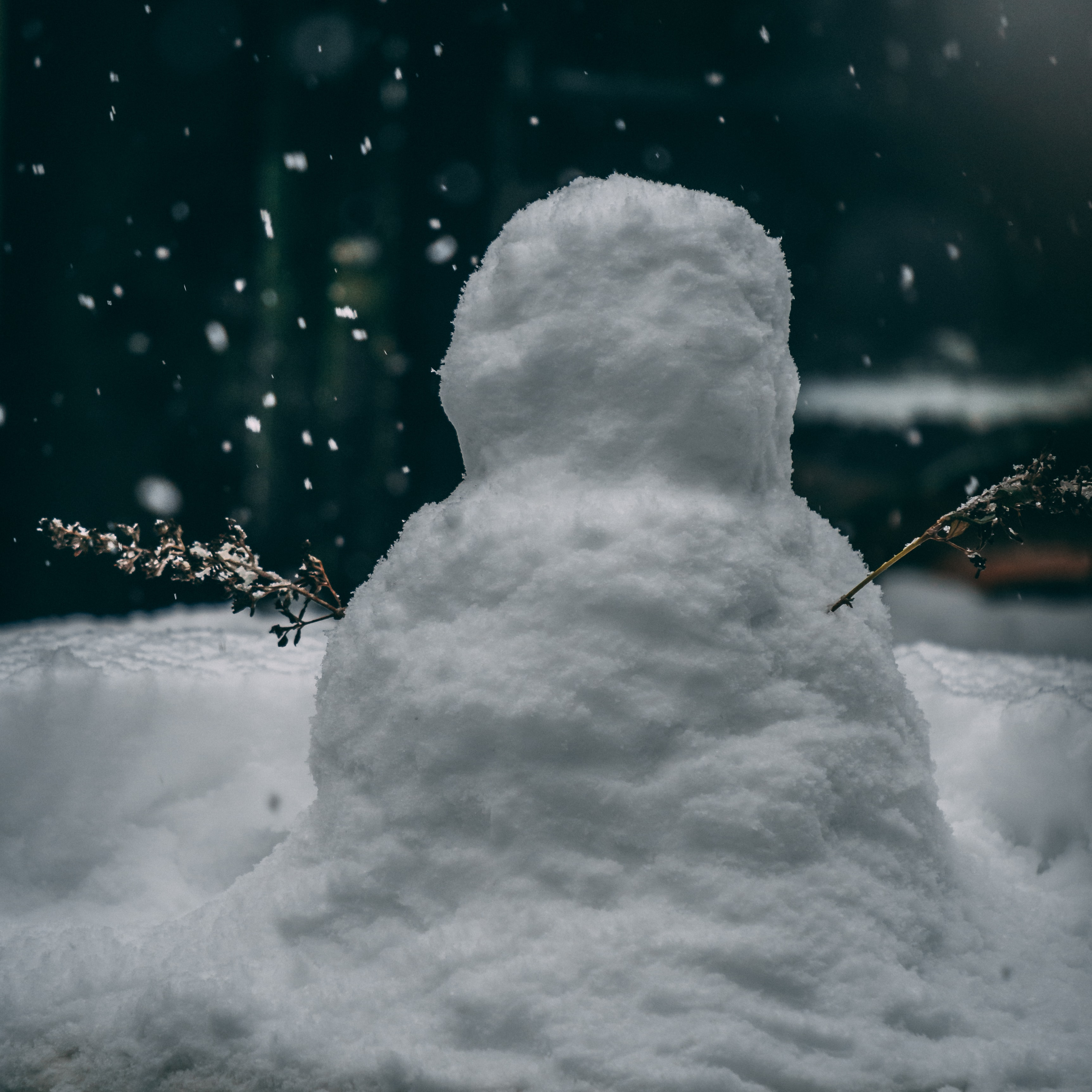 Snowman outdoor during daytime close-up photography