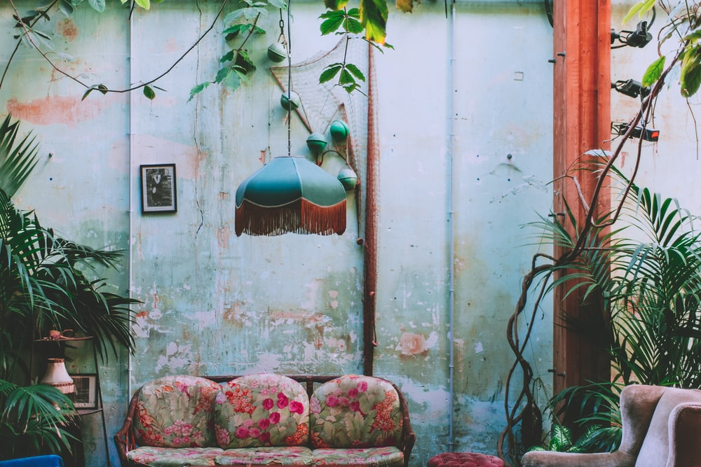 pink floral sofa beside green plant