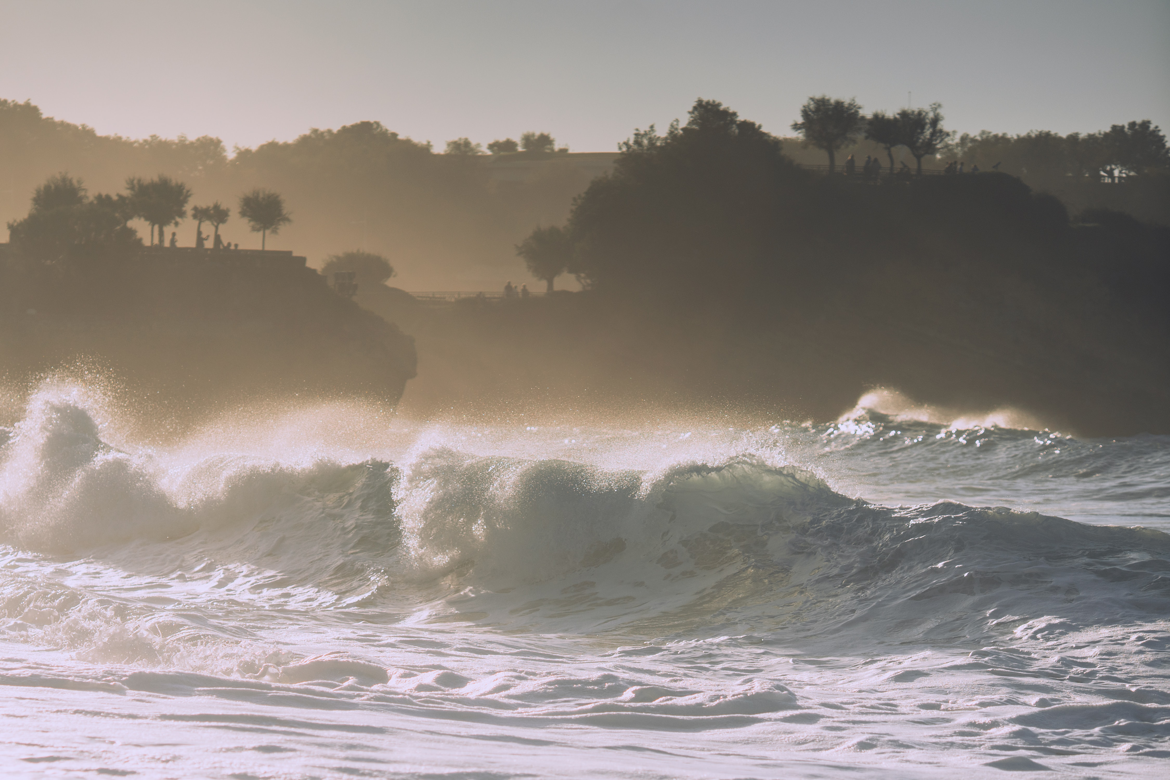 large sea wave with silhouette trees and mountain