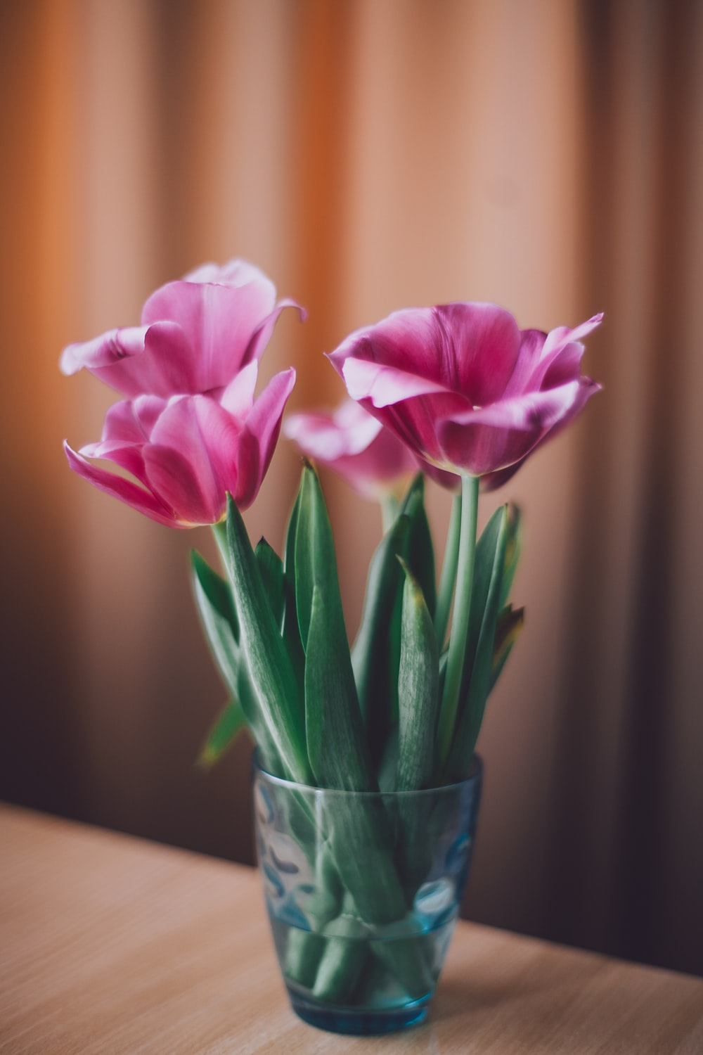 pink petaled flowers in vase at table