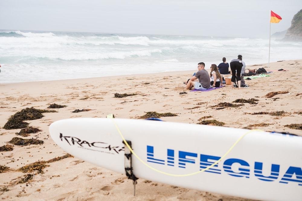 surfboard near people sitting near shore