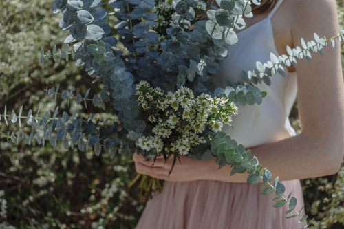 Bouquet of Ornamental Baby Blue Eucalyptus