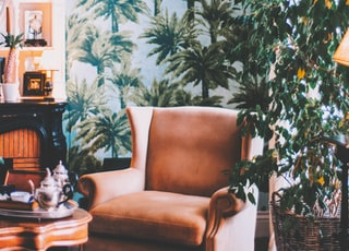 brown sofa chair beside green plant