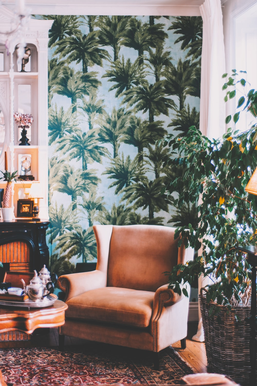 brown sofa chair beside green plant