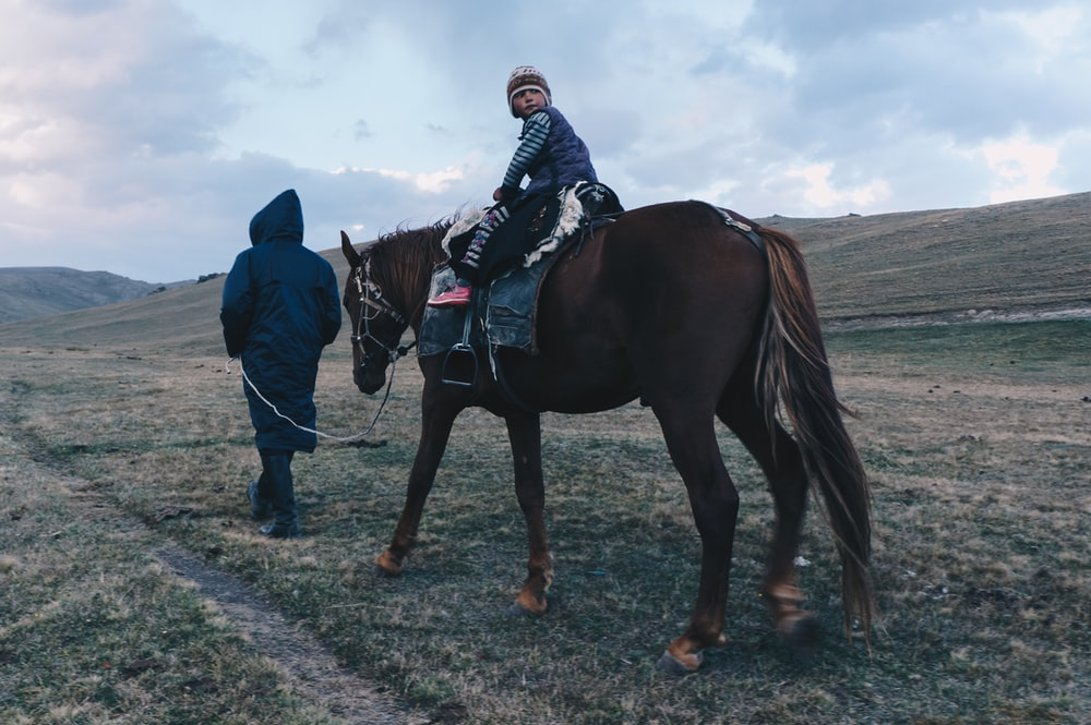 person riding on brown horse
