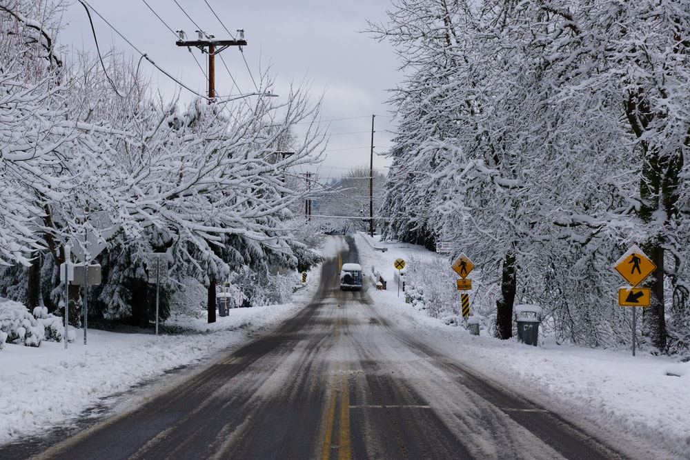vehicle passing road between snow covered trees during daytime
