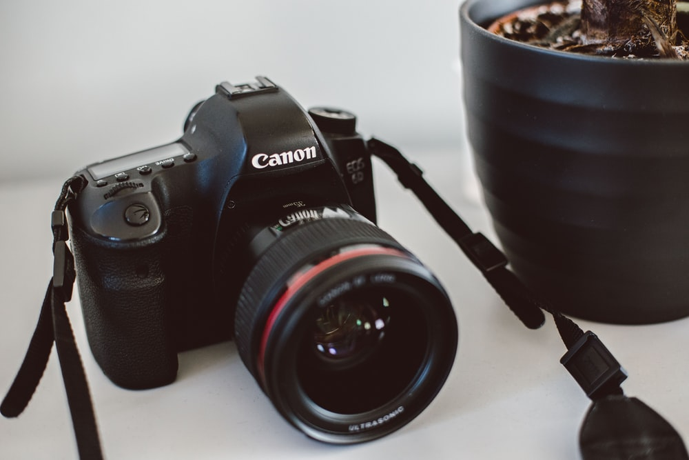black Canon SLR camera near plant pot on white surface