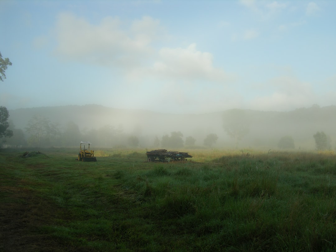The old settler's cottage I lived in for 3 months as a housesitter was on a large piece of land. This shot captures the fog on the meadow above the cabin. With the yellow tractor and the wagon full of timber, I felt this shot captured a scene that defied time.