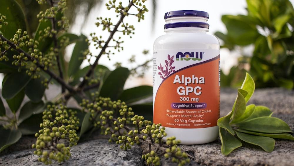 Now Alpha GPC jar