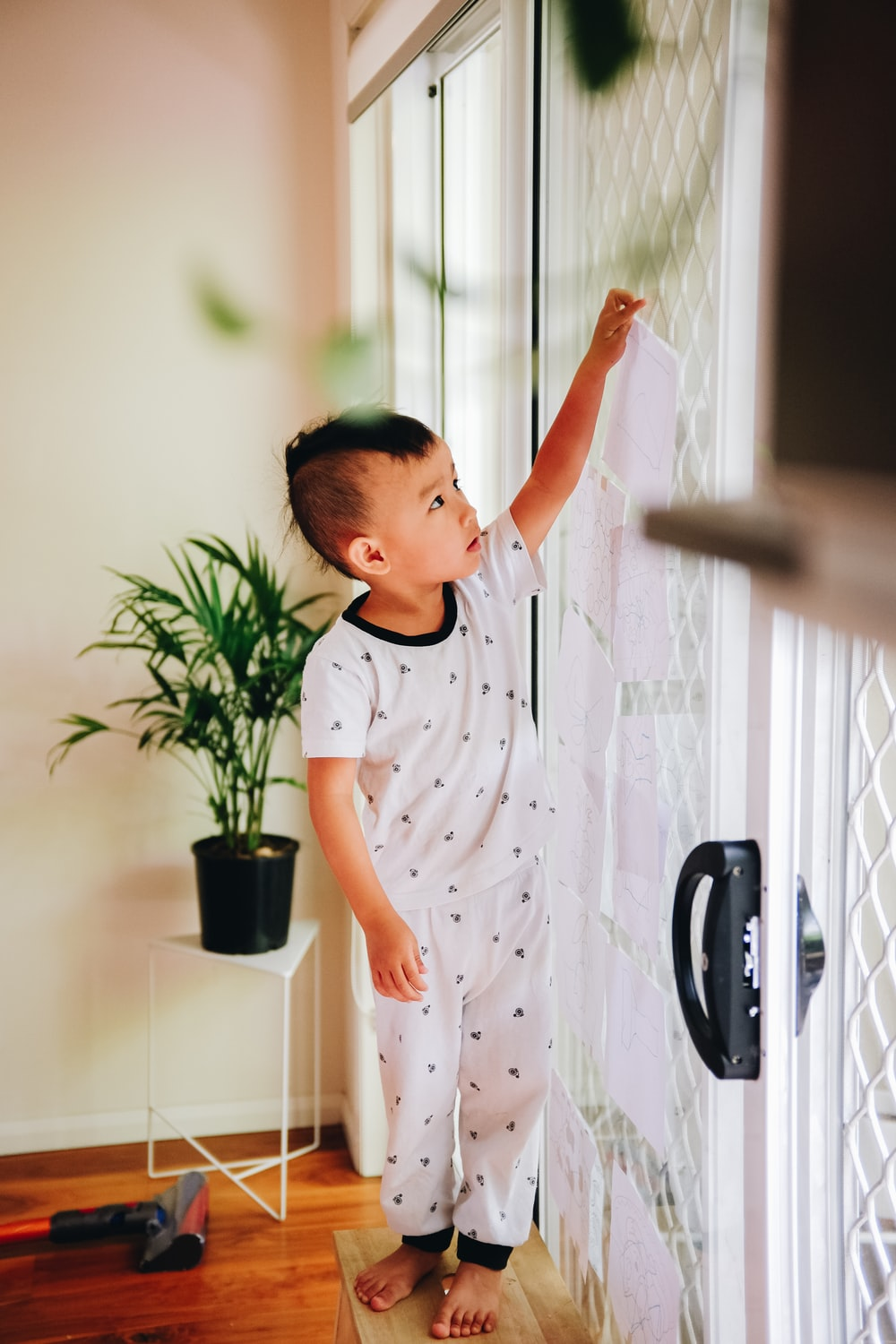 boy standing beside glass door and green linear leafed plant
