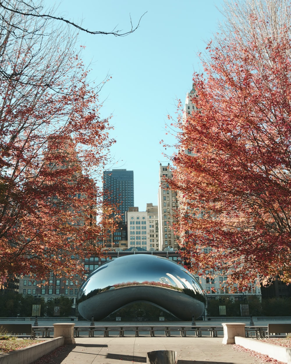 Cloud Gate, Chicago at daytime