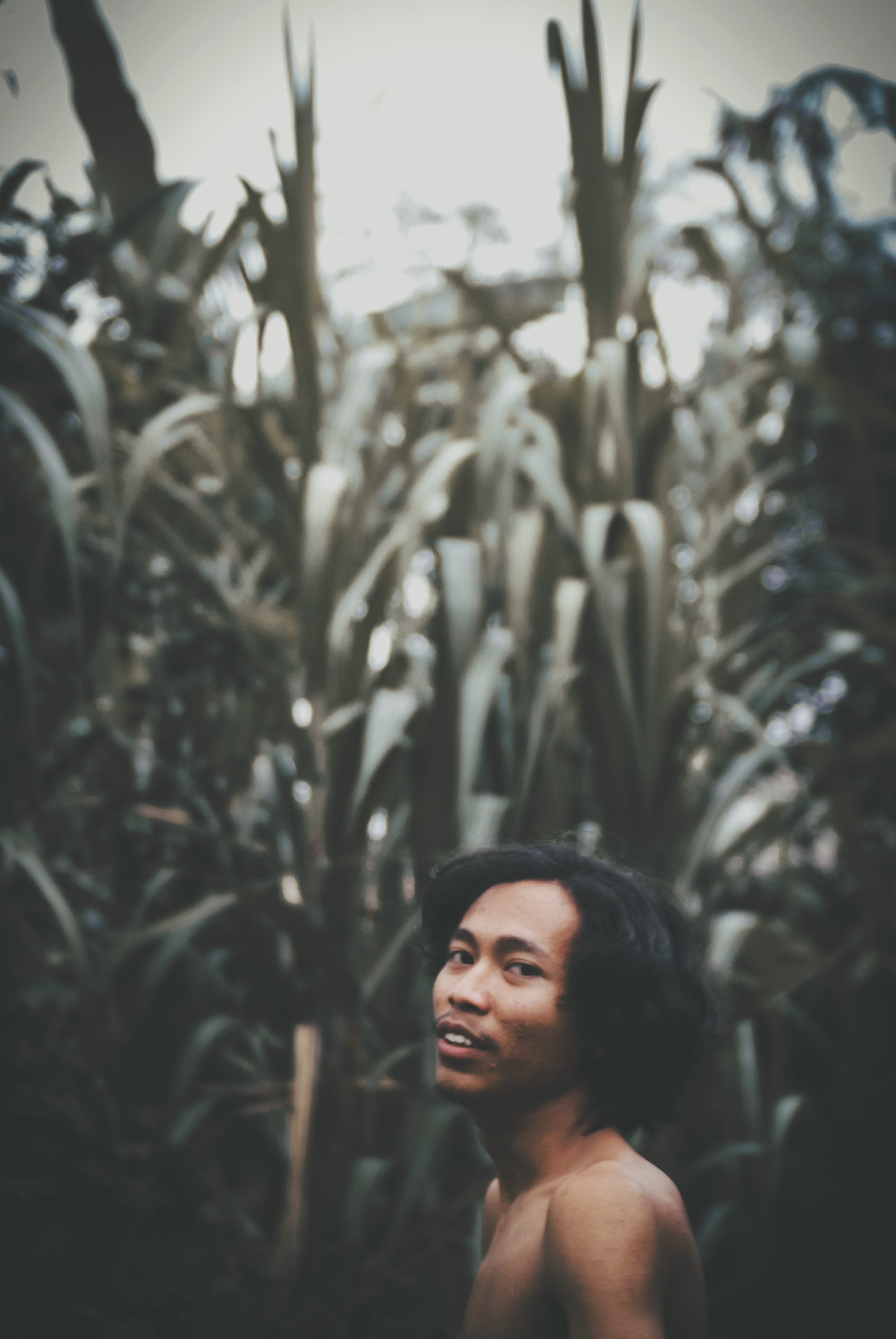 selective focus photography of topless man standing beside green plants