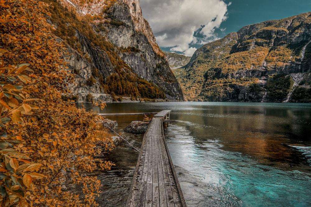 brown wooden dock near mountain during daytime