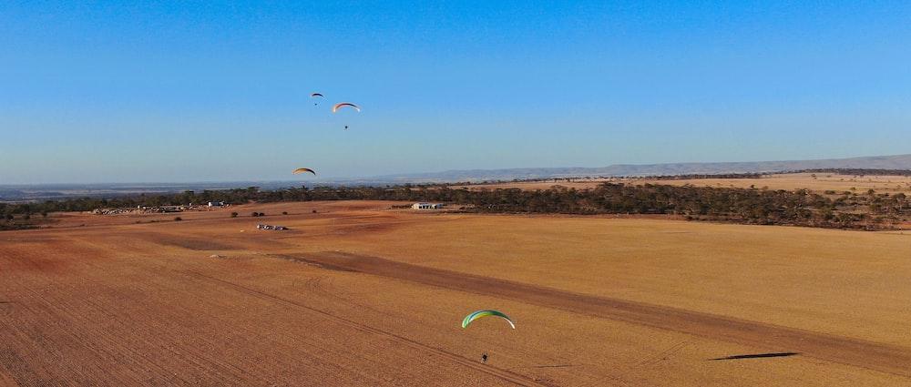 people parasailing during adytime