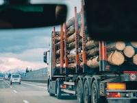 cargo truck full of tree logs passing on road