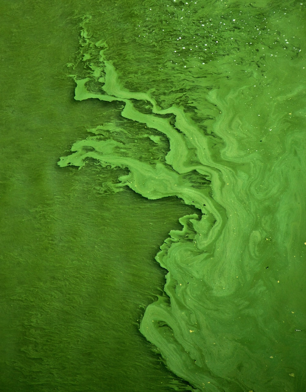green color water