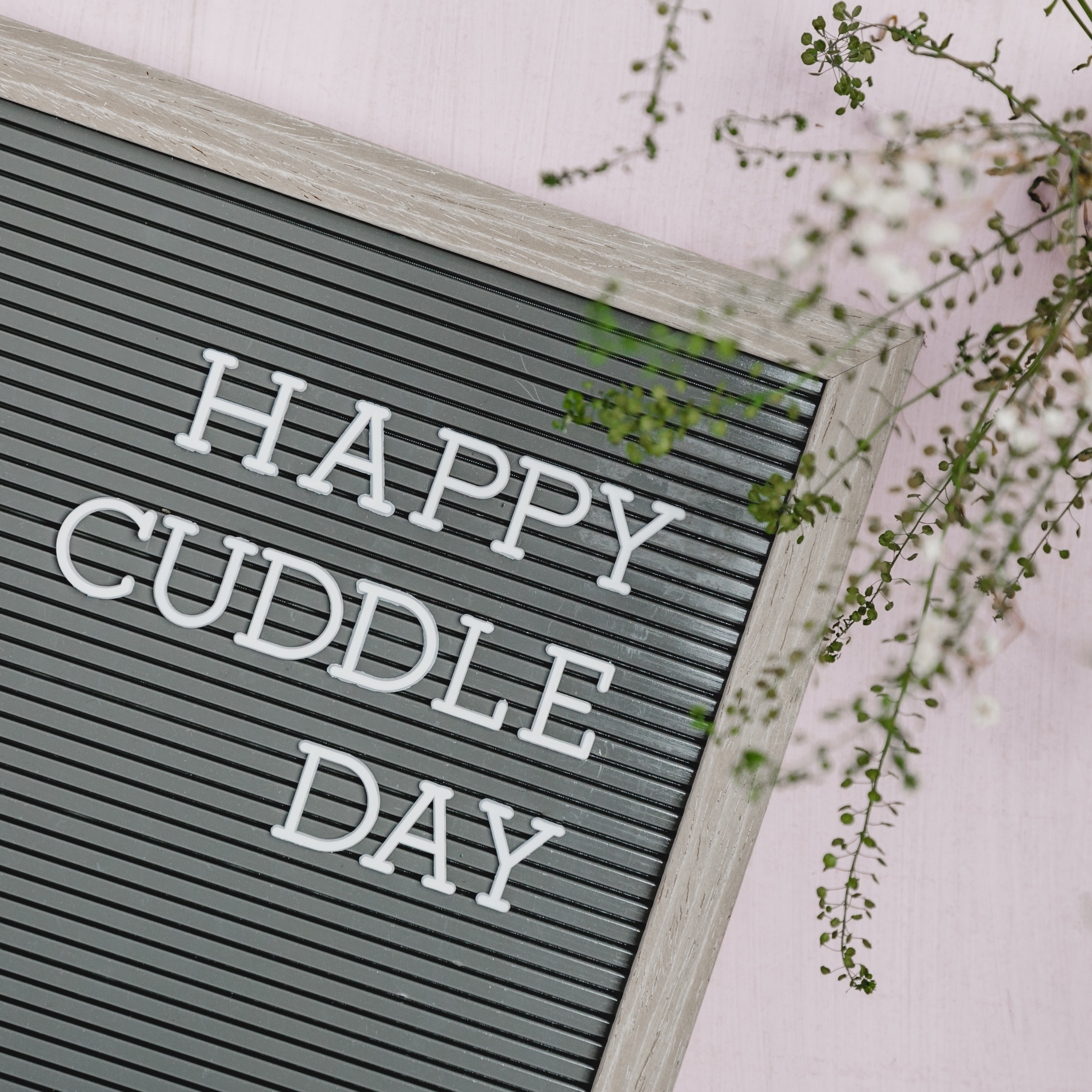 happy cuddle day text