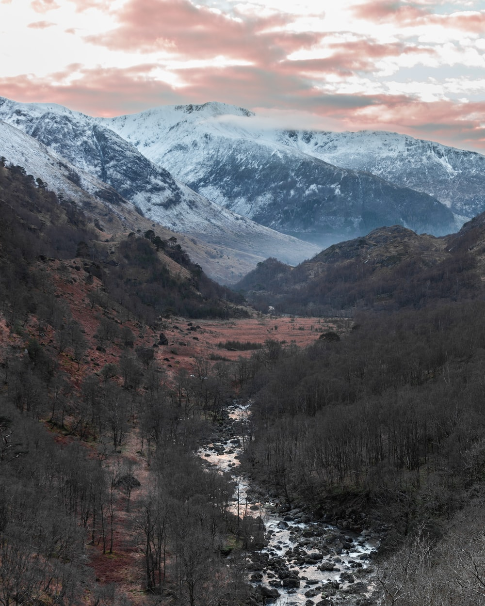 photography of river between trees near snow capped mountain during daytime