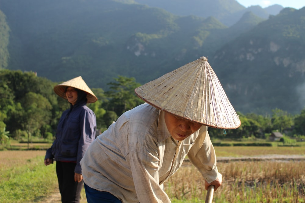 two people wearing straw hats near mountains