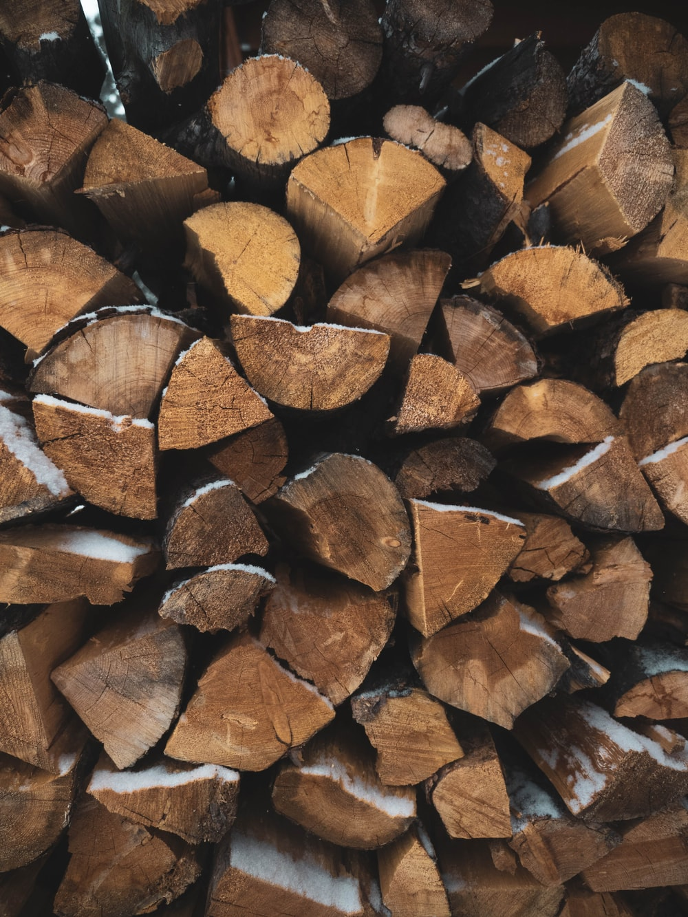selective focus photo of firewood