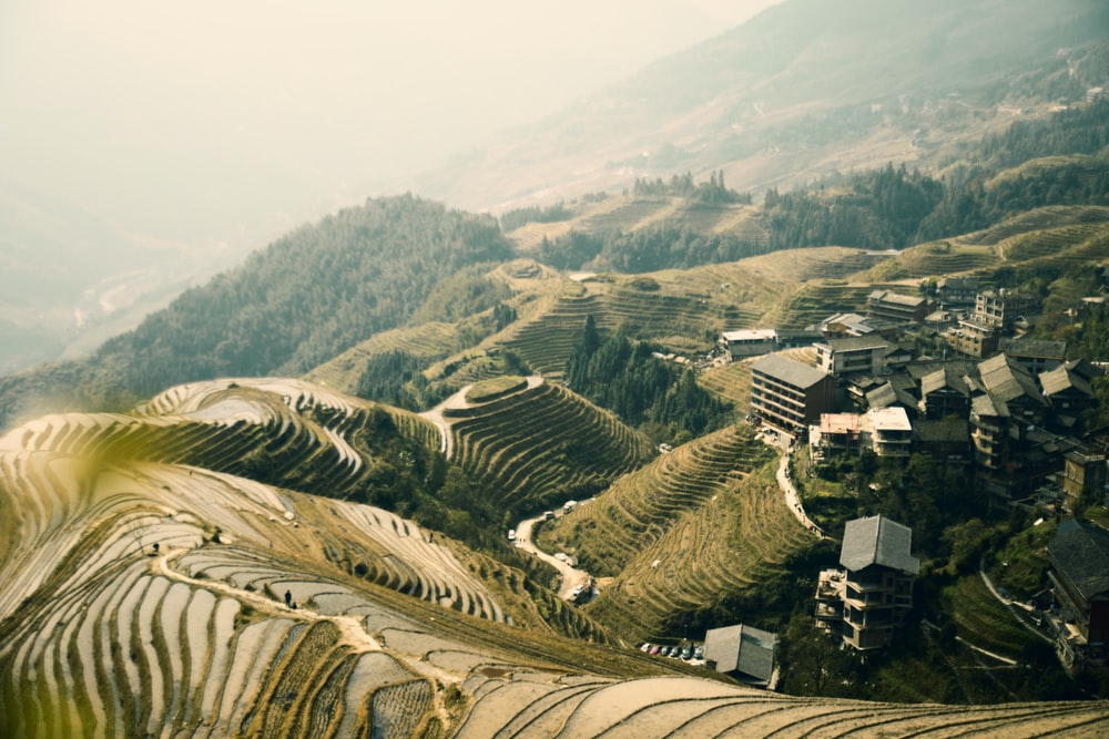 aerial photography of rice terraces during daytime
