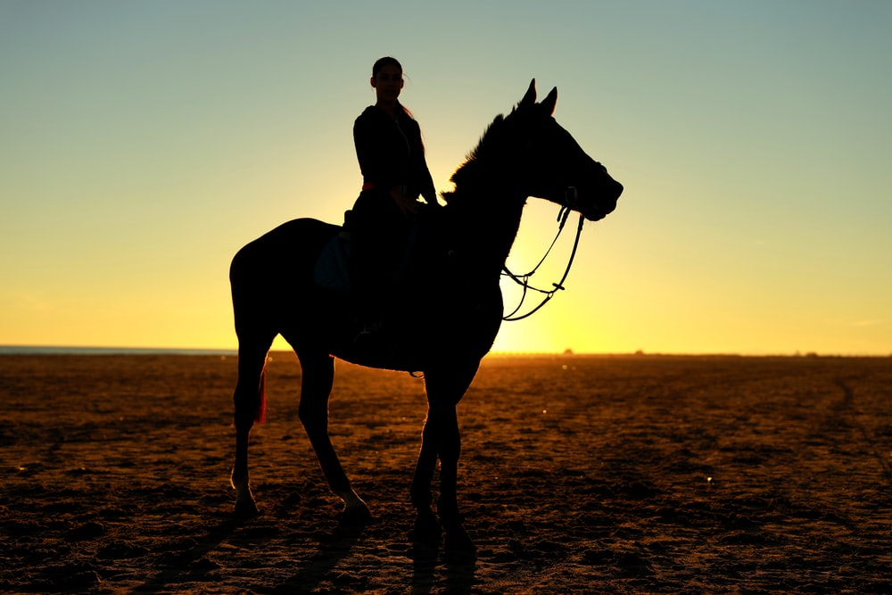 silhouette photography of person riding horse