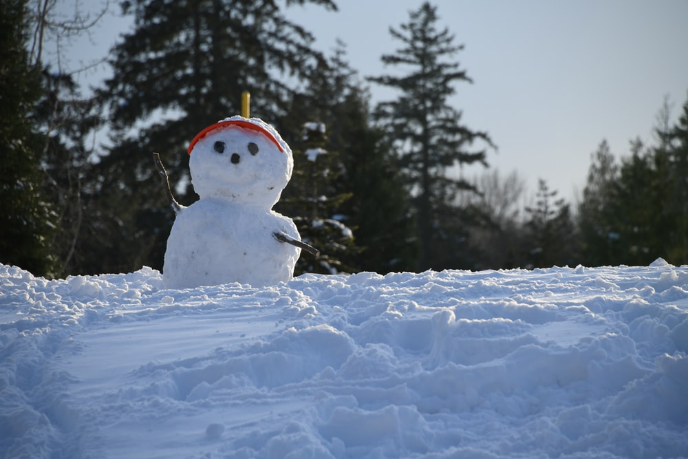 rule of thirds photography of snowman