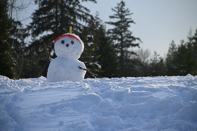 rule of thirds photography of snowman snowman zoom background