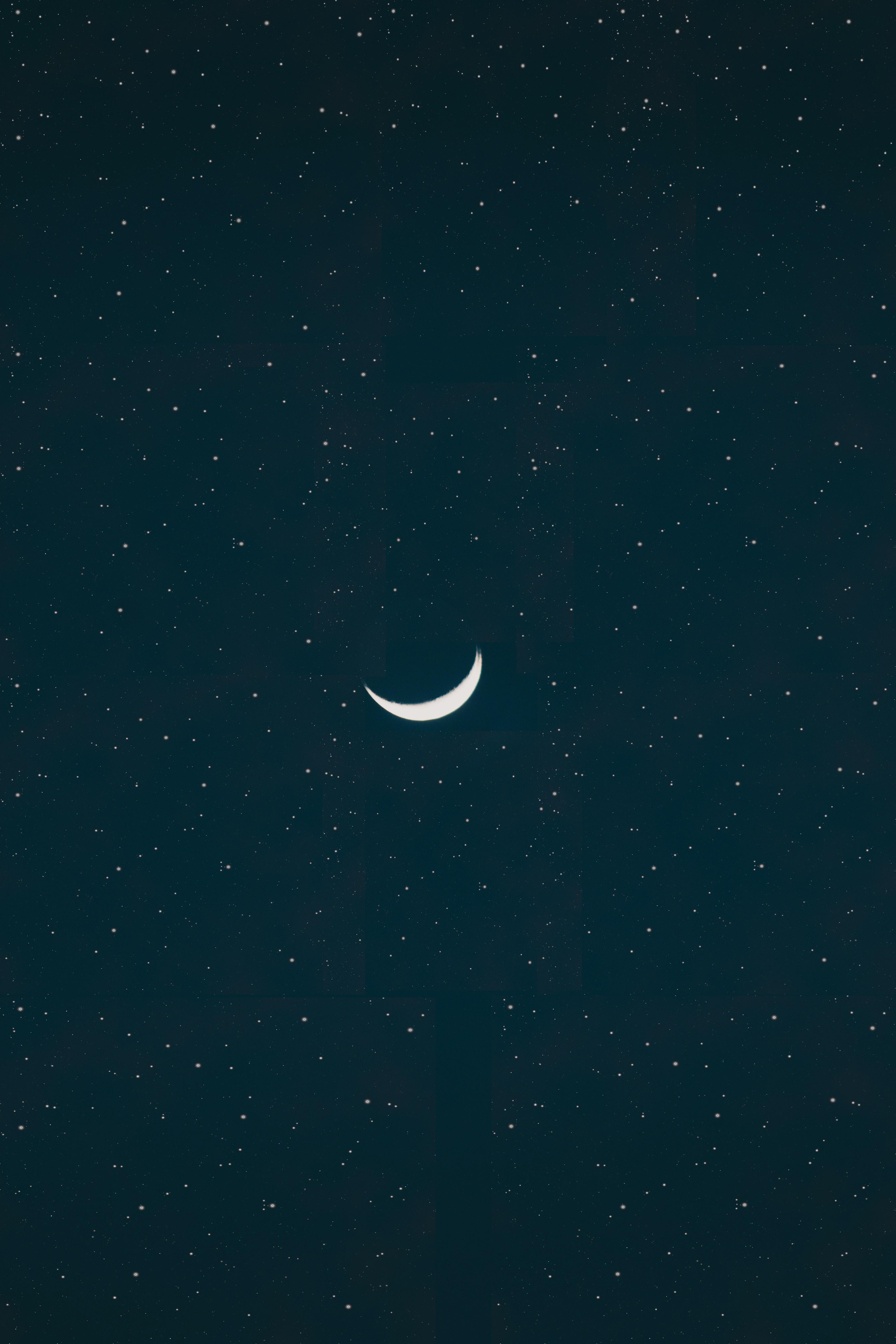 white moon wallpaper